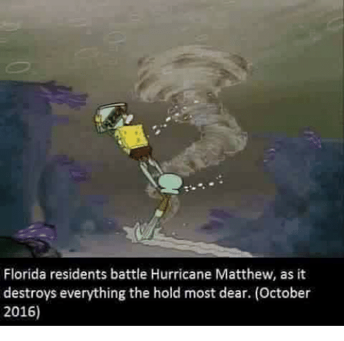 florida residents battle hurricane matthew as it destroys everything the 5043762 ✅ 25 best memes about hurricane matthew hurricane matthew memes