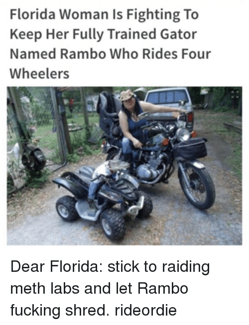 Funny, Rambo, and Sticks: Florida Woman is Fighting To  Keep Her Fully Trained Gator  Named Rambo Who Rides Four  Wheelers Dear Florida: stick to raiding meth labs and let Rambo fucking shred. rideordie