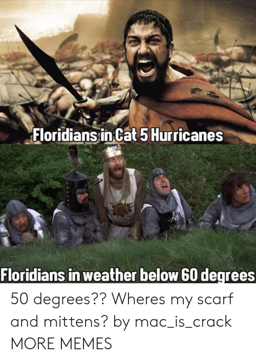 Dank, Memes, and Target: Floridians inCat 5Hurricanes  Floridians in weather below 60 degrees 50 degrees?? Wheres my scarf and mittens? by mac_is_crack MORE MEMES