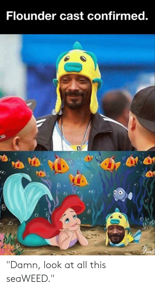 """Dank, 🤖, and All: Flounder cast confirmed. """"Damn, look at all this seaWEED."""""""