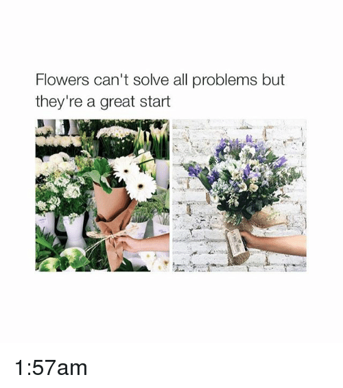 Flowers Cant Solve All Problems But Theyre A Great Start 157am