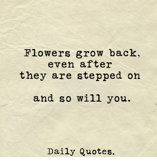 flowers grow back even after they are stepped on and so will you