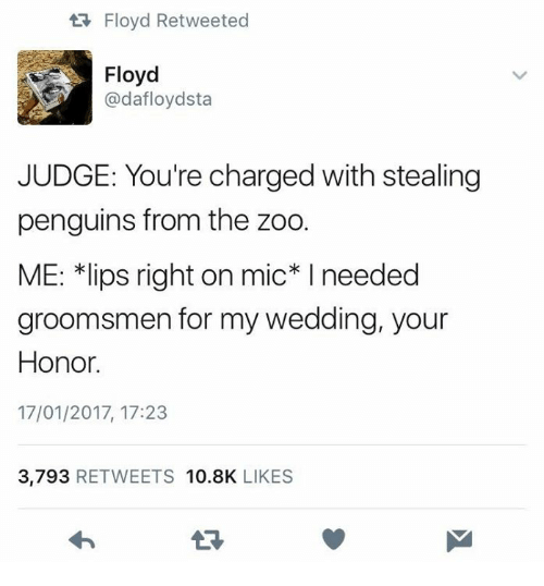 """Penguins, Wedding, and Humans of Tumblr: Floyd Retweeted  Floyd  @dafloydsta  JUDGE: You're charged with stealing  penguins from the zoo.  ME: 치ips right on mic"""" I needed  groomsmen for my wedding, your  Honor.  17/01/2017, 17:23  3,793 RETWEETS 10.8K LIKES"""