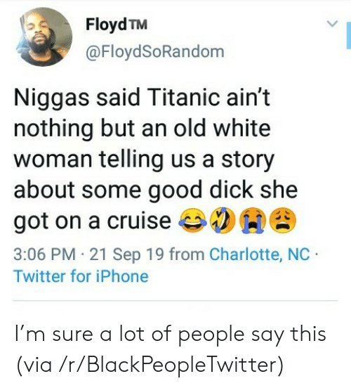 Blackpeopletwitter, Iphone, and Titanic: Floyd TM  @FloydSoRandom  Niggas said Titanic ain't  nothing but an old white  woman telling us a story  about some good dick she  got on a cruise  3:06 PM 21 Sep 19 from Charlotte, NC  Twitter for iPhone I'm sure a lot of people say this (via /r/BlackPeopleTwitter)