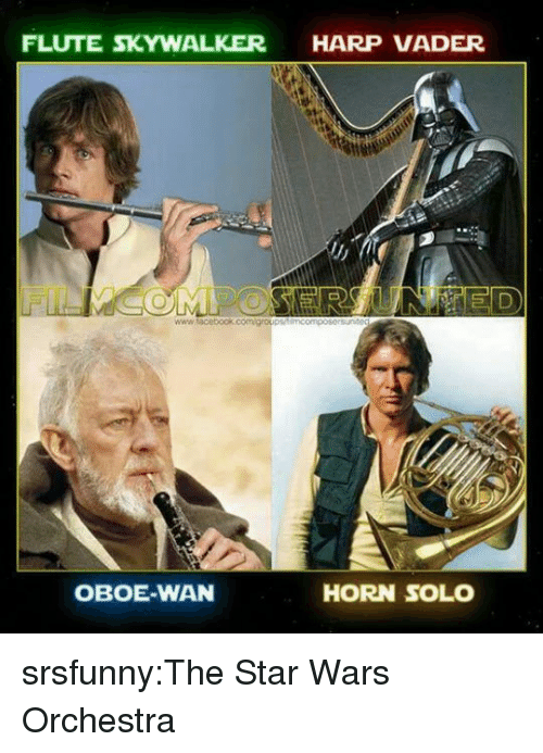 Star Wars, Tumblr, and Blog: FLUTE SKYWALKER HARP VADER  OBOE-WAN  HORN SOLO srsfunny:The Star Wars Orchestra