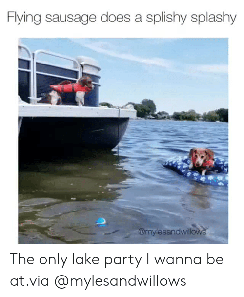 Instagram, Party, and Target: Flying sausage does a splishy splashy  @mylesandwillows The only lake party I wanna be at.via@mylesandwillows