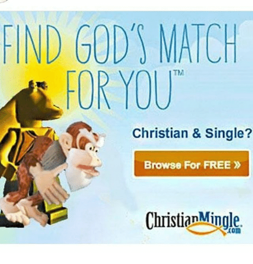 Match browse free