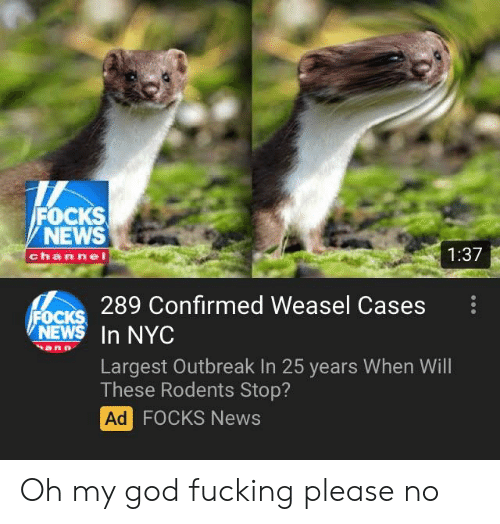 Fucking, God, and News: FOCKS  NEWS  channel  1:37  289 Confirmed Weasel Cases :  NEW In NYC  Largest Outbreak In 25 years When Will  These Rodents Stop?  Ad  FOCKS News Oh my god fucking please no