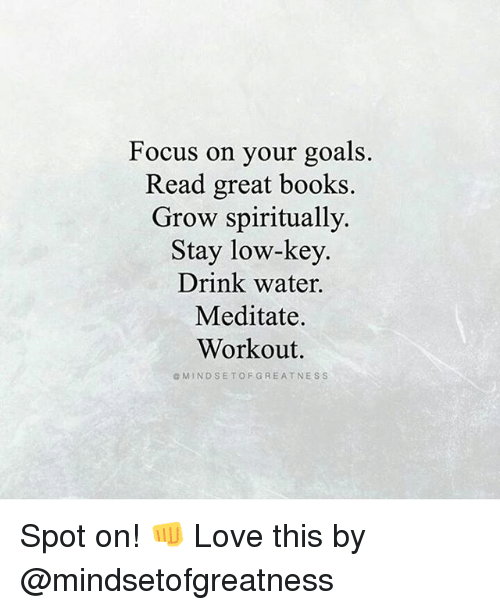 Books, Goals, and Love: Focus on your goals.  Read great books.  Grow spiritually.  Stay low-key.  Drink water.  Meditate.  Workout.  G MIND SET OF GREATNESS Spot on! 👊 Love this by @mindsetofgreatness