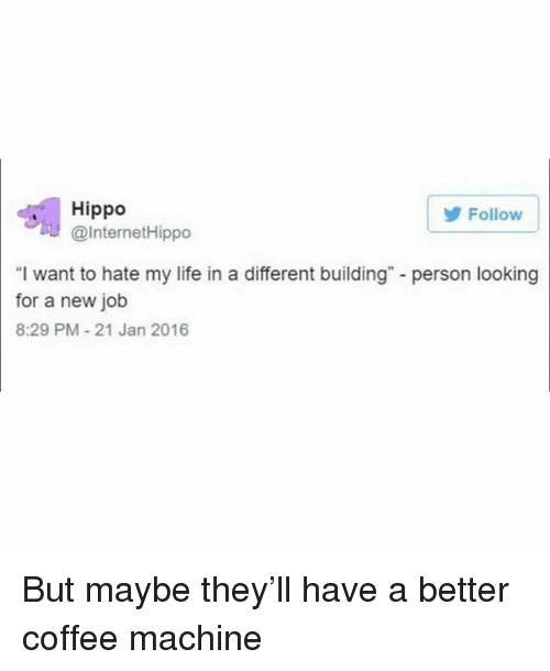 """Life, Coffee, and Girl Memes: Follow  Hippo  @InternetHippo  """"I want to hate my life in a different building"""" - person looking  for a new job  8:29 PM-21 Jan 2016 But maybe they'll have a better coffee machine"""
