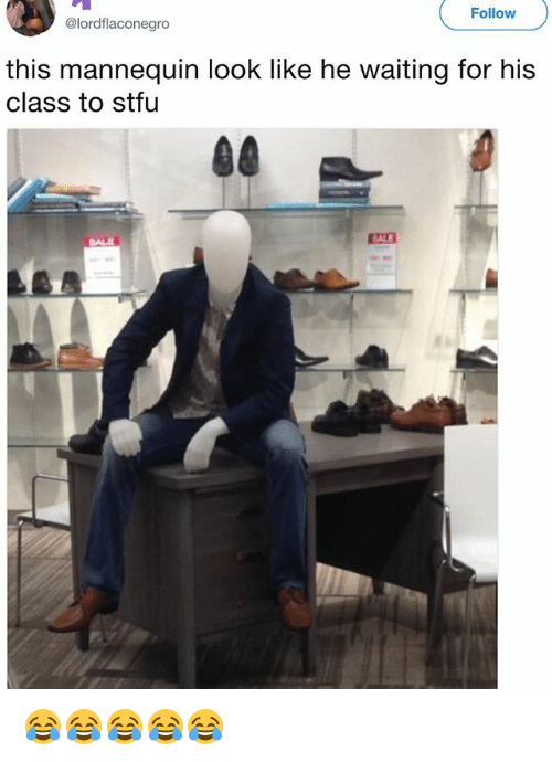 Stfu, Girl Memes, and Mannequin: Follow  @lordflaconegro  this mannequin look like he waiting for his  class to stfu  SALE  SALE 😂😂😂😂😂