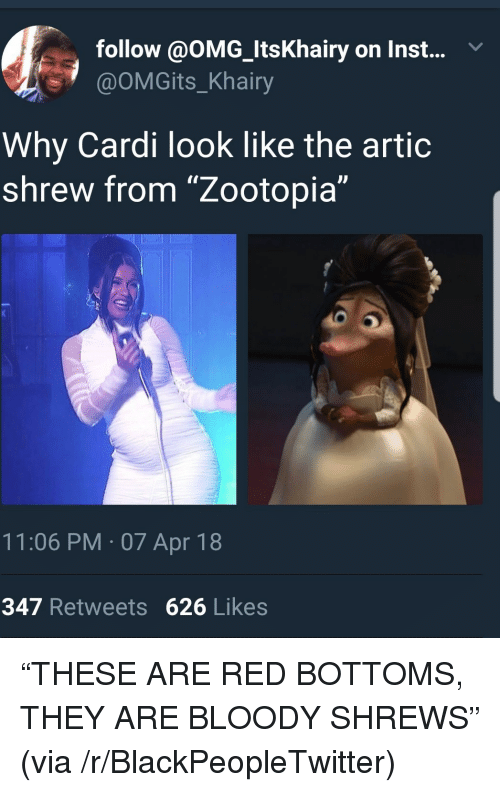 "Blackpeopletwitter, Omg, and Red: follow @OMG_ItsKhairy on Inst...v  @OMGits_Khairy  Why Cardi look like the artic  shrew from ""Zootopia""  11:06 PM 07 Apr 18  347 Retweets 626 Likes <p>&ldquo;THESE ARE RED BOTTOMS, THEY ARE BLOODY SHREWS&rdquo; (via /r/BlackPeopleTwitter)</p>"