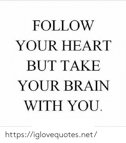 Brain, Heart, and Net: FOLLOW  YOUR HEART  BUT TAKE  YOUR BRAIN  WITH YOU https://iglovequotes.net/