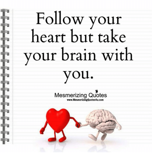 Follow your heart but take your brain with you mesmerizing quotes memes brain and heart follow your heart but take your brain with you thecheapjerseys Image collections
