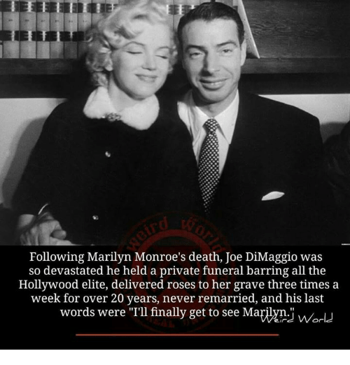 "Memes, Death, and Joe DiMaggio: Following Marilyn Monroe's death, Joe DiMaggio was  so devastated he held a private funeral barring all the  Hollywood elite, delivered roses to her grave three times a  week for over 20 years, never remarried, and his last  words were ""I'llfinally get to see Mayiym.i Or"