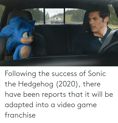 Following The Success Of Sonic The Hedgehog 2020 There Have Been Reports That It Will Be Adapted Into A Video Game Franchise Sonic The Hedgehog Meme On Me Me
