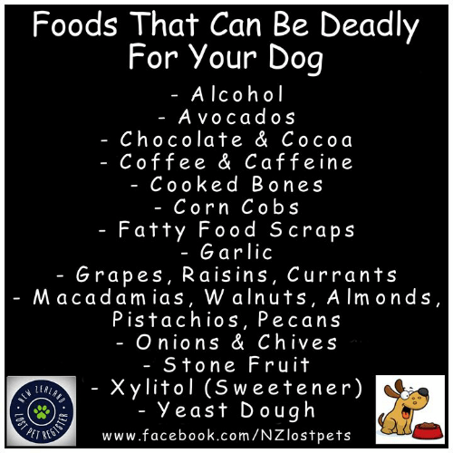 Bones, Facebook, and Food: Foods That Can Be Deadly  For Your Doq  - Alcoh ol  - Avocados  - Chocolate & Cocoa  Coffee & Caffeine  - Cooked Bones  - Corn Cobs  - Fatty Food S craps  - Garlic  - Grapes, Raisins, Currants  Macadamias, W alnuts, AImonds  Pistachios, Pecan  - Onions & Chives  - Stone Fru it  Xylitol (Sweetener)  Yeast Dough  LEAL  PET RES  www.facebook.com/NZlostpets