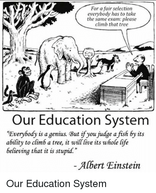 "Albert Einstein, Life, and Memes: For a fair selection  everybody has to take  the same exam: please  climb that tree  Our Education System  ""Everybody is a genius. But if you judge a fish by its  ability to climb a tree, it will live its whole life  believing that it is stupid.""  Albert Einstein Our Education System"