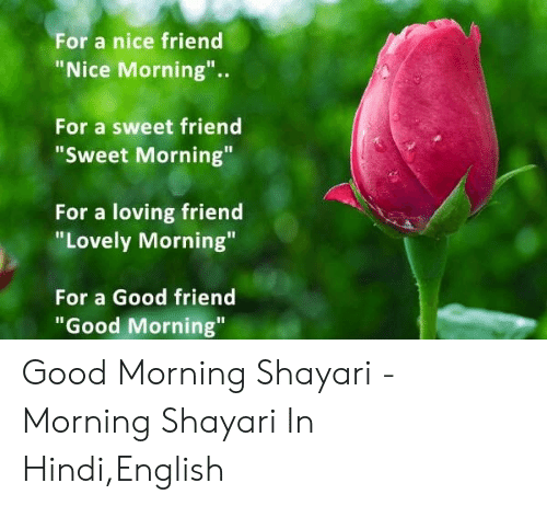 For a Nice Friend Nice Morning for a Sweet Friend Sweet Morning for