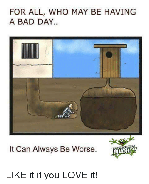 Bad, Bad Day, and Dank: FOR ALL, WHO MAY BE HAVING  A BAD DAY.  It Can Always Be Worse. LIKE it if you LOVE it!