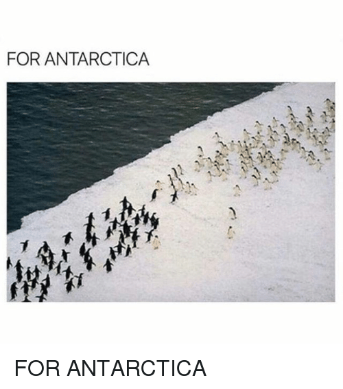 Memes, Antarctica, and 🤖: FOR ANTARCTICA