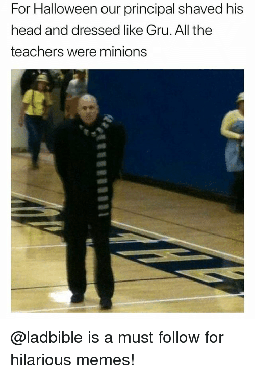 Funny, Halloween, and Head: For Halloween our principal shaved his  head and dressed like Gru. All the  teachers were minions @ladbible is a must follow for hilarious memes!