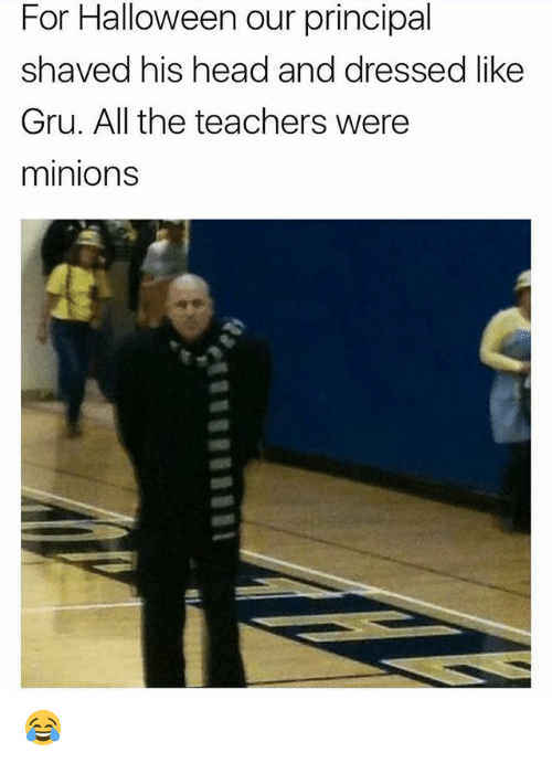 Halloween, Head, and Memes: For Halloween our principal  shaved his head and dressed like  Gru. All the teachers were  minions 😂