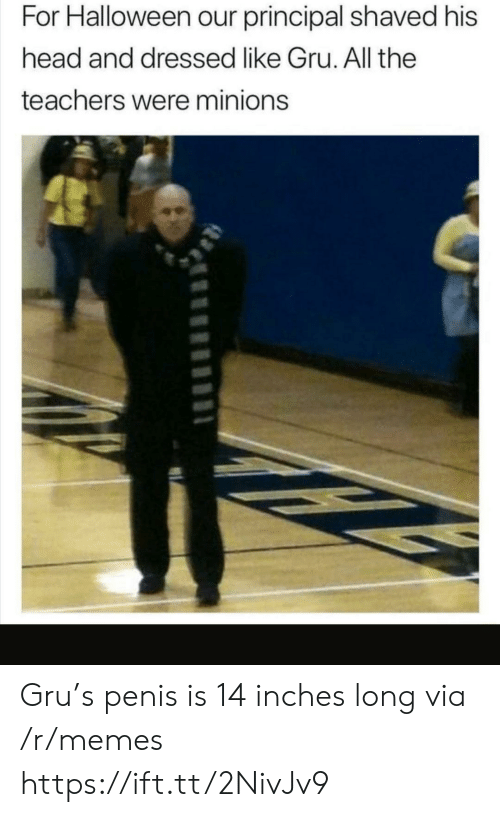 Halloween, Head, and Memes: For Halloween our principal shaved his  head and dressed like Gru. All the  teachers were minions Gru's penis is 14 inches long via /r/memes https://ift.tt/2NivJv9