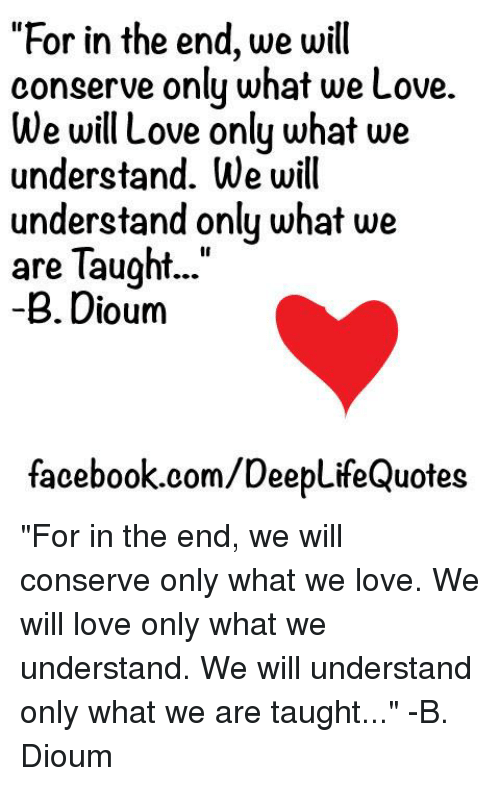 For In The End We Will Conserve Only What We Love We Will Love Only