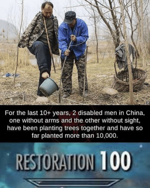 China, Trees, and Been: For the last 10+ years, 2 disabled men in China,  one without arms and the other without sight,  have been planting trees together and have so  far planted more than 10,000.  RESTORATION 100