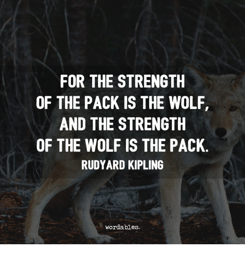 For THE STRENGTH OF THE PACK IS THE WOLF AND THE STRENGTH OF