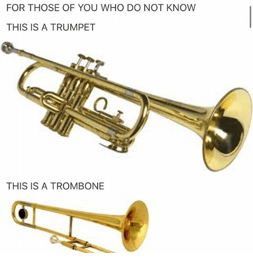Ironic, Who, and Trumpet: FOR THOSE OF YOU WHO DO NOT KNOW  THIS IS A TRUMPET  THIS IS A TROMBONE
