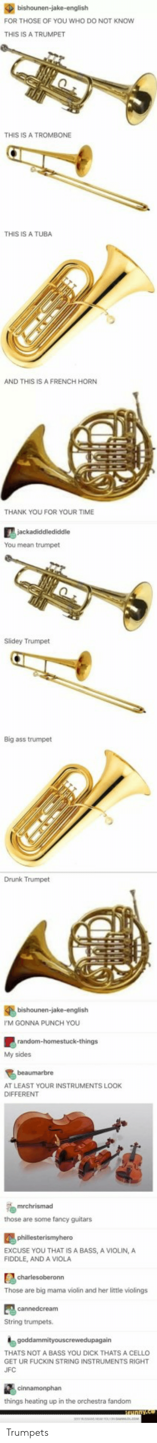 Drunk, Ufc, and Thank You: FOR THOSE OF YOU WHO DO NOT KNOW  THIS IS A TRUMPET  THIS IS A TROMBONE  THIS IS A TUBA  AND THIS IS A FRENCH HORN  THANK YOU FOR YOUR TIME  You mean trumpet  Slidey Trumpet  Big ass trumpet  Drunk Trumpet  bishounen-jake-english  M GONNA PUNCH YOU  My sides  beaumarbre  AT LEAST YOUR INSTRUMENTS LOOK  DIFFERENT  those are some fancy guitars  EXCUSE YOU THAT IS A BASS, A VIOLIN, A  FIDDLE, AND A VIOLA  Those are big mama violin and her little violings  String trumpets.  THATS NOT A BASS YOU DICK THATS A CELLO  GET UR FUCKIN STRING INSTRUMENTS RIGHT  UFC  things heating up in the orchestra fandonm Trumpets