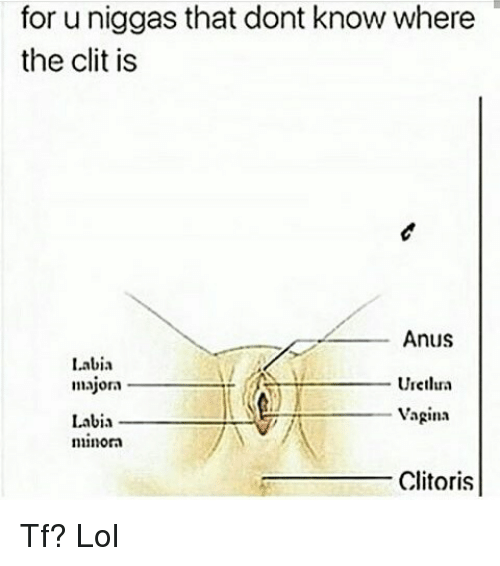 Where the clit is