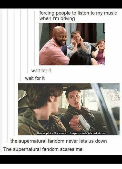 Memes, 🤖, and Shotgun: forcing people to listen to my music  when I'm driving  wait for it  wait for it  Driver picks the music, shotgun shuts his cakehole  the supernatural fandom never lets us down  The supernatural fandom scares me