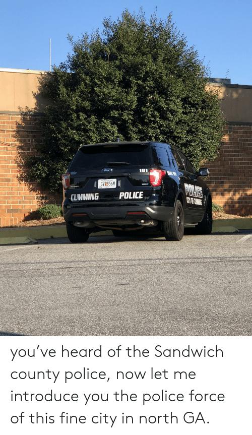 Police, Ford, and Georgia: Ford  181  BAL 911  BRANEN  GEORGIA  GV2556M  POLICES  UTO COMANC  FORSYTH  POLICE  CUMMING you've heard of the Sandwich county police, now let me introduce you the police force of this fine city in north GA.
