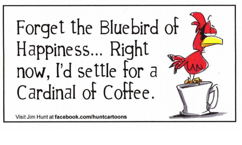 forget-the-bluebird-of-happiness-right-n
