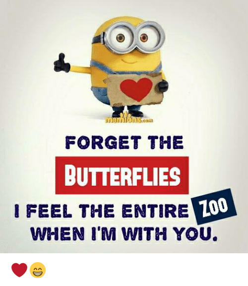 Memes, 🤖, and You: FORGET THE  BUTTERFLIES  IFEEL THE ENTIRE  Z00  LO  WHEN I'M WITH YOU ❤️😁