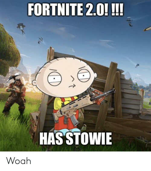 FORTNITE 20!!!! HAS STOWIE Woah | Woah Meme on ME ME
