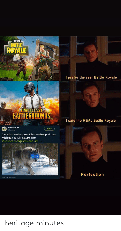 Dolphins, Michigan, and The Real: FORTNITE  BATTLE  ROYALE  I prefer the real Battle Royale  PLAYERUNKNOWN'S  BAITLEGROUNLS  I said the REAL Batlle Royale  IFLSciencee  Follow  Canadian Wolves Are Being Airdropped Into  Michigan To Kill dolphins  iflscience.com/plants-and-ani .  Perfection  10.59 AM-7 Mar 2019 heritage minutes