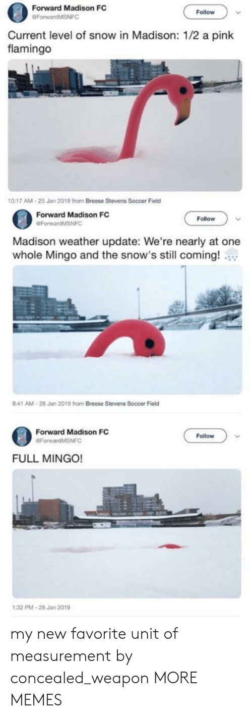 Dank, Memes, and Soccer: Forward Madison FC  Follow  Current level of snow in Madison: 1/2 a pink  flamingo  0:17 AM-25 Jan 2019 from Breese Stevens Soccer Field  Forward Madison FC  OForwardMSNFC  Follow  Madison weather update: We're nearly at one  whole Mingo and the snow's still coming!  8:41 AM-28 Jan 2019 from Breese Stevens Soccer Field  Forward Madison FC  Follow  FULL MINGO!  PMA-28 Jan 2019 my new favorite unit of measurement by concealed_weapon MORE MEMES