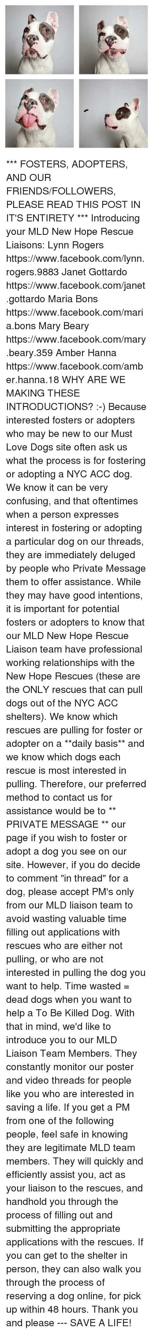 """Dogs, Facebook, and Friends: ***  FOSTERS, ADOPTERS, AND OUR FRIENDS/FOLLOWERS, PLEASE READ THIS POST IN IT'S ENTIRETY ***  Introducing your MLD New Hope Rescue Liaisons:  Lynn Rogers https://www.facebook.com/lynn.rogers.9883  Janet Gottardo https://www.facebook.com/janet.gottardo  Maria Bons https://www.facebook.com/maria.bons  Mary Beary https://www.facebook.com/mary.beary.359  Amber Hanna https://www.facebook.com/amber.hanna.18  WHY ARE WE MAKING THESE INTRODUCTIONS?  :-)  Because interested fosters or adopters who may be new to our Must Love Dogs site often ask us what the process is for fostering or adopting a NYC ACC dog. We know it can be very confusing, and that oftentimes when a person expresses interest in fostering or adopting a particular dog on our threads, they are immediately deluged by people who Private Message them to offer assistance.   While they may have good intentions, it is important for potential fosters or adopters to know that our MLD New Hope Rescue Liaison team have professional working relationships with the New Hope Rescues (these are the ONLY rescues that can pull dogs out of the NYC ACC shelters). We know which rescues are pulling for foster or adopter on a **daily basis** and we know which dogs each rescue is most interested in pulling.   Therefore, our preferred method to contact us for assistance would be to ** PRIVATE MESSAGE ** our page if you wish to foster or adopt a dog you see on our site. However, if you do decide to comment """"in thread"""" for a dog, please accept PM's only from our MLD liaison team to avoid wasting valuable time filling out applications with rescues who are either not pulling, or who are not interested in pulling the dog you want to help. Time wasted = dead dogs when you want to help a To Be Killed Dog.  With that in mind, we'd like to introduce you to our MLD Liaison Team Members. They constantly monitor our poster and video threads for people like you who are interested in saving a life. If you get a PM fro"""