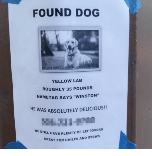 """Chilis, Dog, and Still: FOUND DOG  YELLOW LAB  ROUGHLY 35 POUNDS  NAMETAG SAYS """"WINSTON""""  HE  AS ABSOLUTELY DELICIOUS!!  WE STILL HAVE PILIS  L HAVE PLENTY OF LEFTOVERS  REAT FOR CHILI'S AND STEWS"""