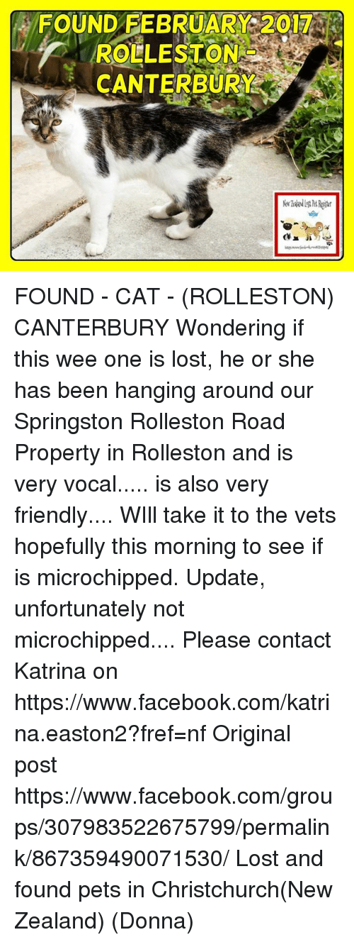 Facebook, Memes, and Wee: FOUND FEBRUARY 2017  ROLLESTON  CANTERBURY S FOUND - CAT - (ROLLESTON) CANTERBURY  Wondering if this wee one is lost, he or she has been hanging around our Springston Rolleston Road Property in Rolleston and is very vocal..... is also very friendly.... WIll take it to the vets hopefully this morning to see if is microchipped.  Update, unfortunately not microchipped....  Please contact Katrina on https://www.facebook.com/katrina.easton2?fref=nf  Original post https://www.facebook.com/groups/307983522675799/permalink/867359490071530/ Lost and found pets in Christchurch(New Zealand) (Donna)