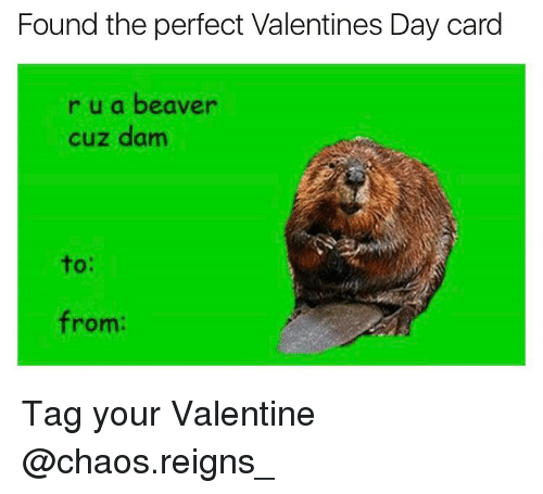 25 Best Memes About Valentines Day Card – Funny Valentines Day Cards Meme
