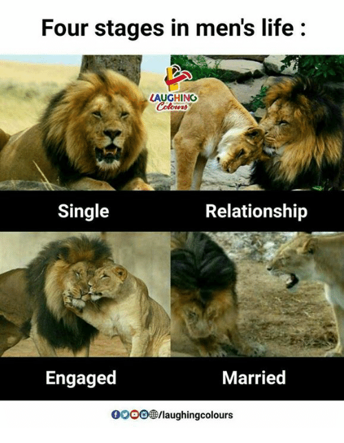 Life, Indianpeoplefacebook, and Single: Four stages in men's life:  LAUGHING  Colours  Single  Relationship  Engaged  Married  0ooo@/laughingcolours