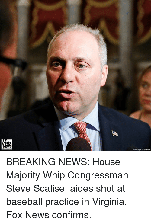 Baseball, Memes, and News: FOX  NEWS  AP Photo/Alax Brandon BREAKING NEWS: House Majority Whip Congressman Steve Scalise, aides shot at baseball practice in Virginia, Fox News confirms.