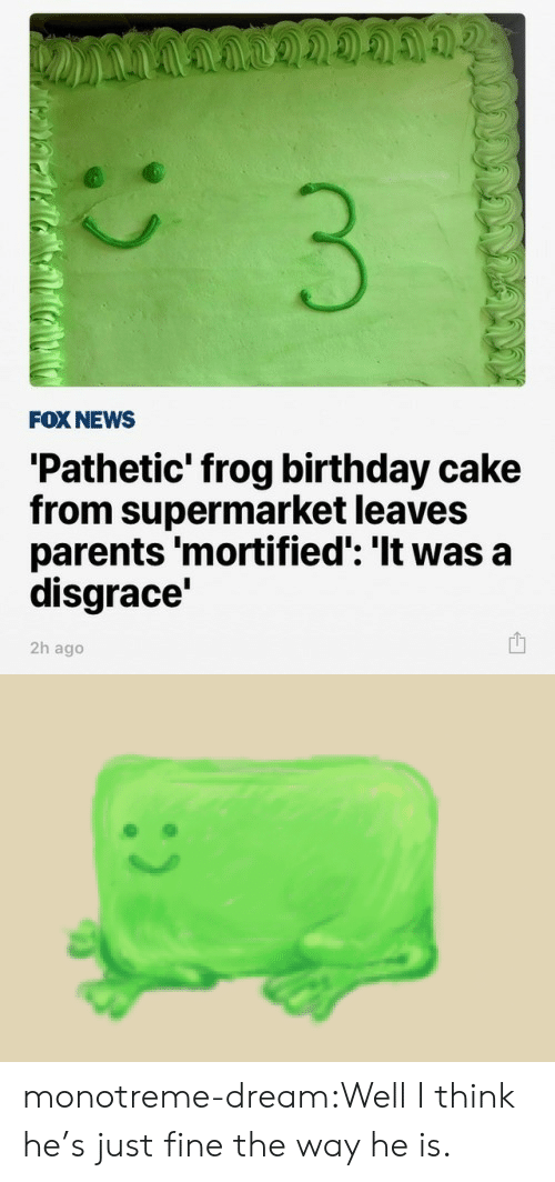 Birthday, News, and Parents: FOX NEWS  'Pathetic' frog birthday cake  from supermarket leaves  parents 'mortified': 'It was a  disgrace'  2h ago monotreme-dream:Well I think he's just fine the way he is.