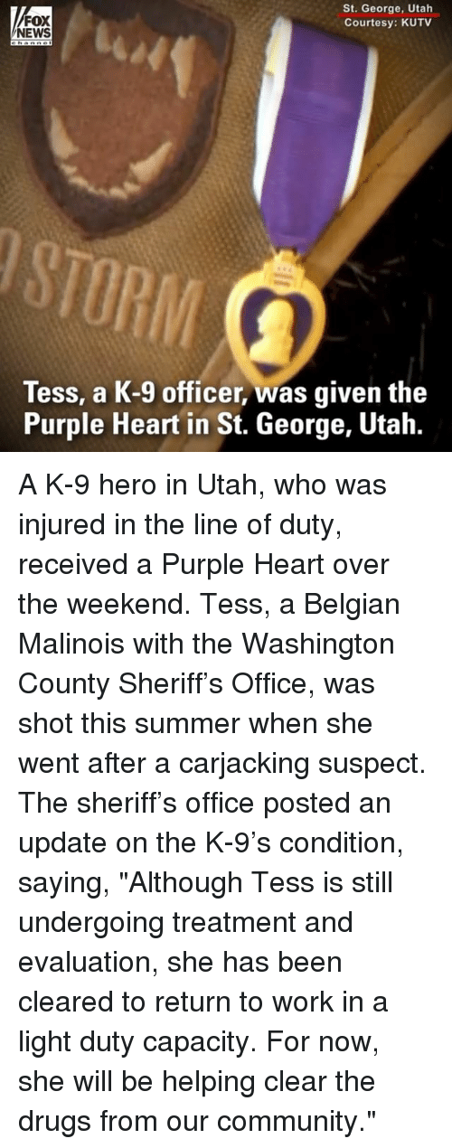 "Community, Drugs, and Memes: FOX  NEWS  St. George, Utah  Courtesy: KUTV  RIM  Tess, a K-9 officer, was given the  Purple Heart in St. George, Utah. A K-9 hero in Utah, who was injured in the line of duty, received a Purple Heart over the weekend. Tess, a Belgian Malinois with the Washington County Sheriff's Office, was shot this summer when she went after a carjacking suspect. The sheriff's office posted an update on the K-9's condition, saying, ""Although Tess is still undergoing treatment and evaluation, she has been cleared to return to work in a light duty capacity. For now, she will be helping clear the drugs from our community."""