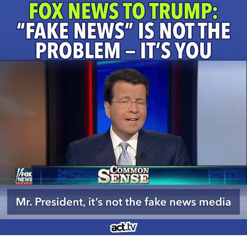 25+ Best Memes About Trump Fake News